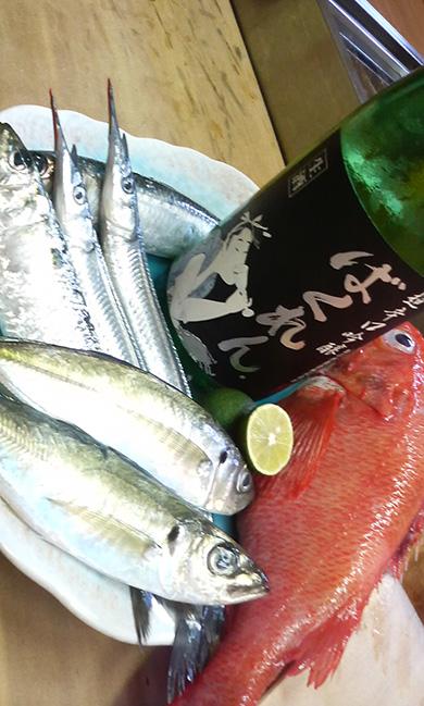 本日は カンヌキサヨリ 釣り鯵 真鰯 鯖 小肌 釣りキンキ 新数の子 穴子 赤貝 毛蟹がおすすめです!