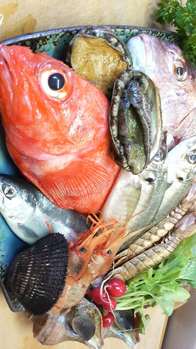 本日は 釣りキンキ 釣り鯵 蝦蛄 牡丹海老 チップ ウニ 真鯛 北寄 マツブ 穴子がおすすめです!